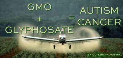 is gmo food safe