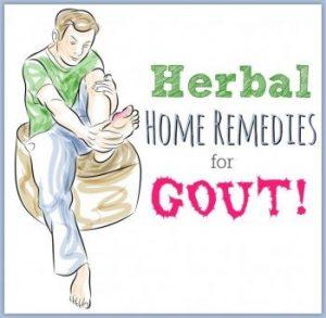 Gout Herbs
