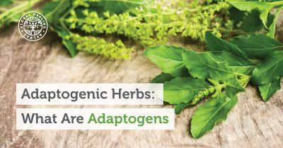 best herbs for adrenal fatigue
