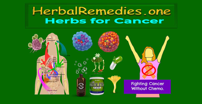 Holistic Treatment of Cancer