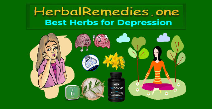 Best Herbs for Depression