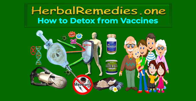 how to detox from vaccines