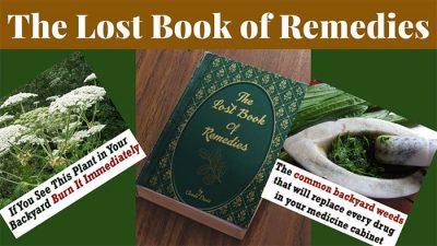 book of natural remedies